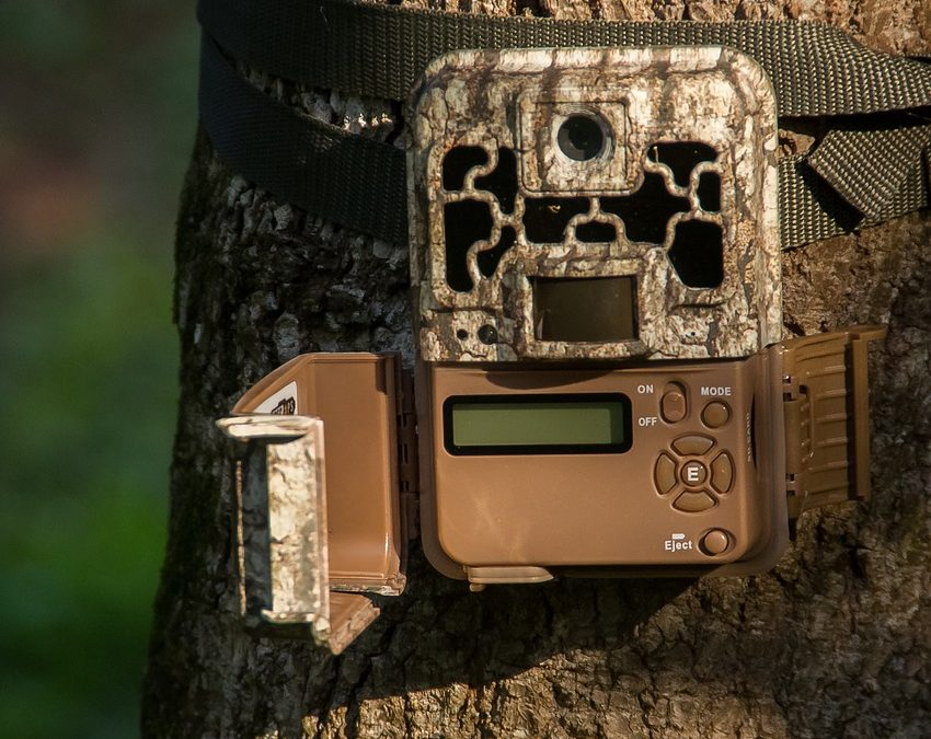 Best Trail Cameras 2018