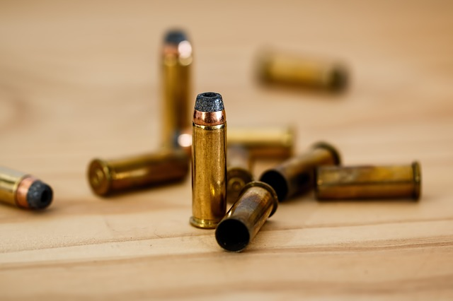 Hunters Need the Right Type of Bullets When Hunting